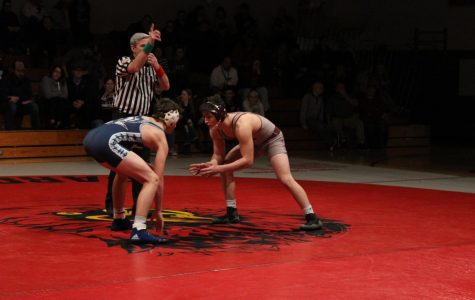 Cardinal's Wrestling Takes Loss to Eagles