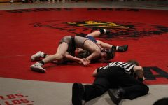 Cards Shine Over Spartans