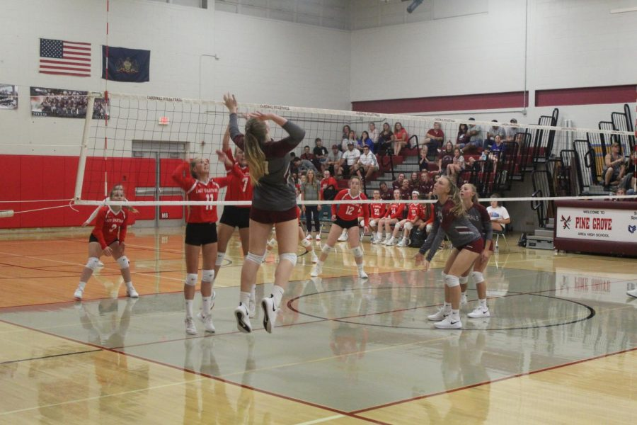 Senior Abbie Brown spikes the volleyball against North Schuylkill.