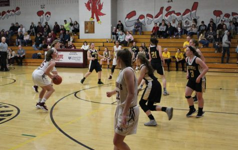 Lady Cards Defeat Lady Panthers