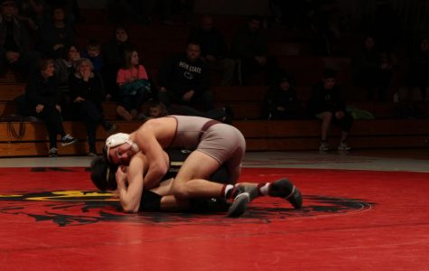 Cards Take Win Over Golden Bears