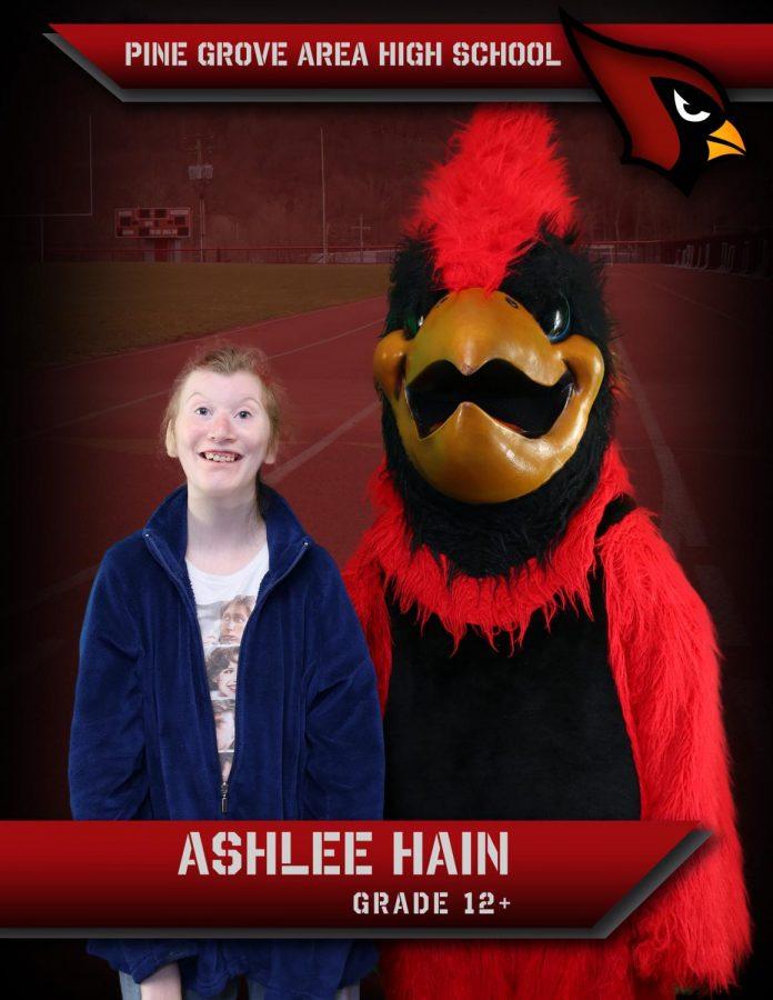 Ashlee Hain