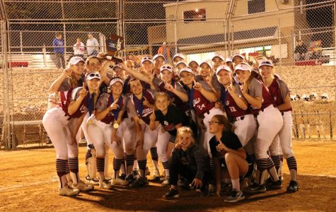 Lady Cards Win Schuylkill League Championship