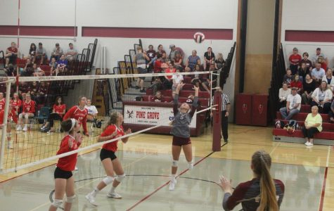 Lady Cards Sweep Lady Spartans